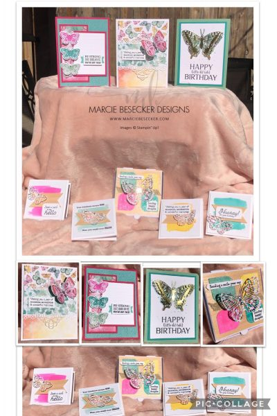 Butterfly Brilliance Collection Class by Marcie Besecker